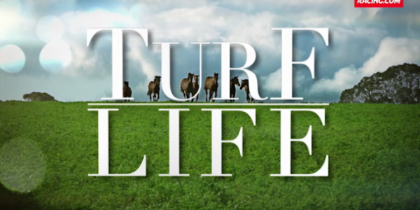 The Turf Life