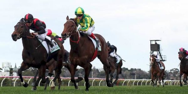 Swampland arrives in time for Dwyer